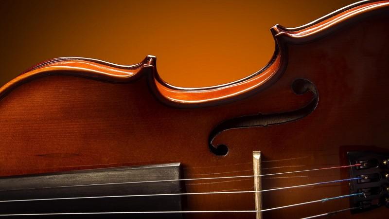 Струнный квартет — музыкальный ансамбль на свадьбу, праздник, юбилей или другое торжество